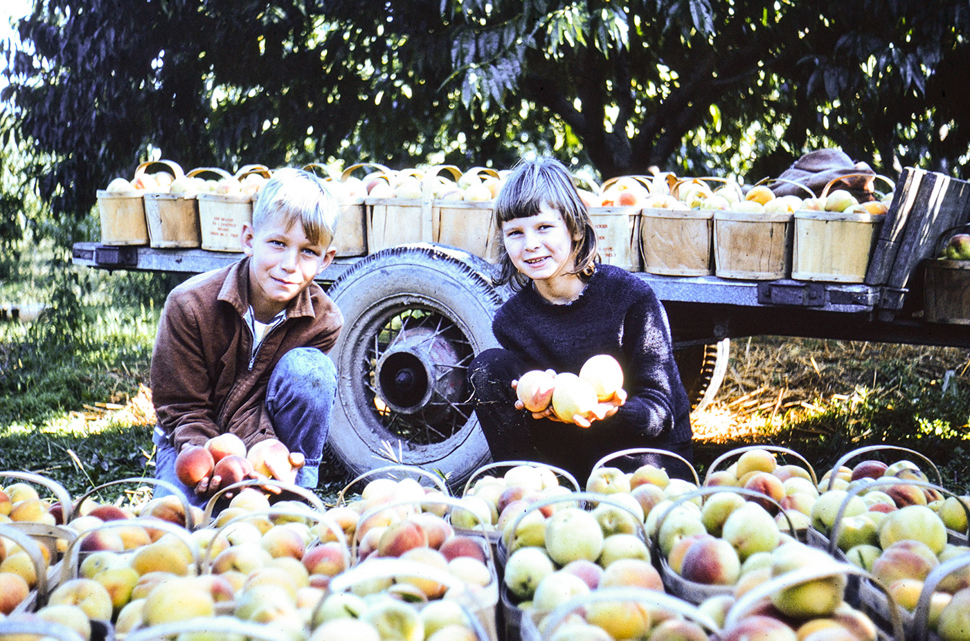 Arnie and Barb showing off the harvest